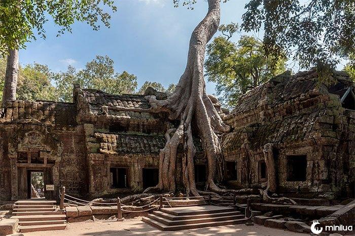 Templo de Ta Promh no Camboja