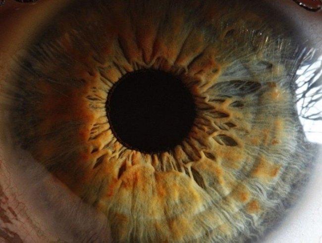 detalhe impressionante fotografia de um olho