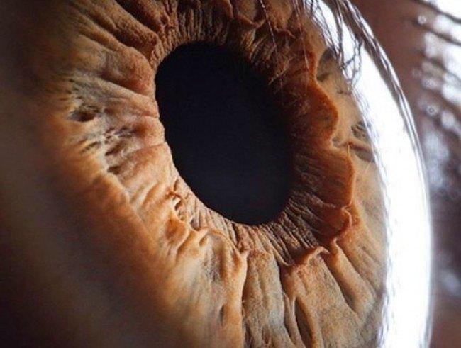 foto do detalhe de um olho