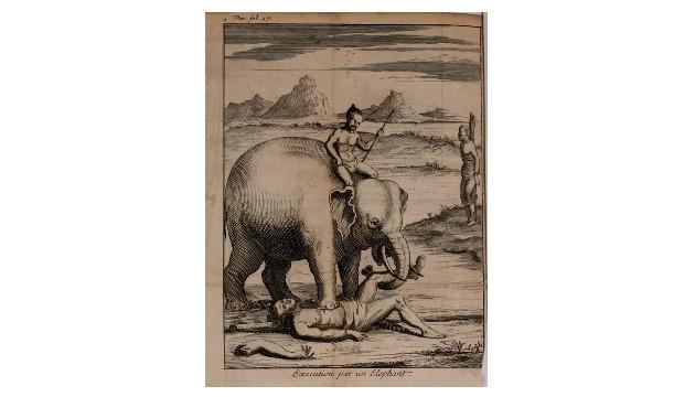 Esmagamento por elefante