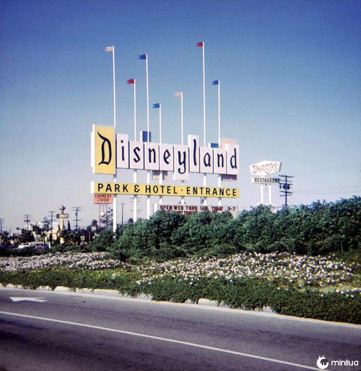 Disney vintage 8