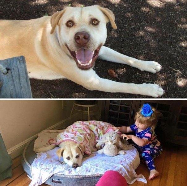 Antes e depois de ter filhos