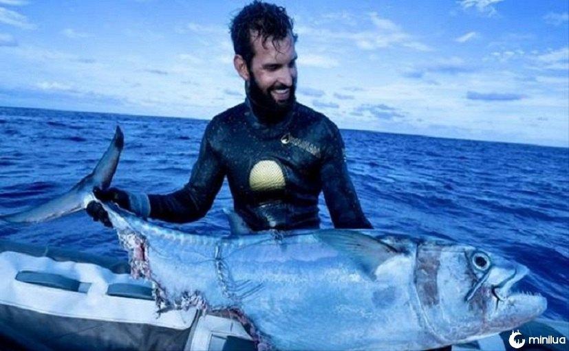 Imagens incríveis mostram pescador no cabo de guerra com tubarões sobre captura de atum | Minilua