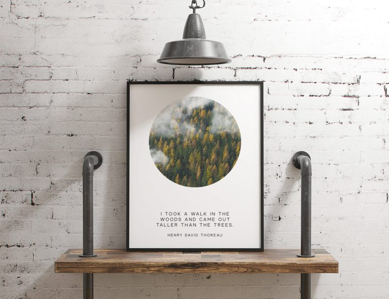 I took a walk in the woods and came out taller than the trees.  ― Henry David Thoreau // Typography Print | Nature Lover Quotes | Poetry