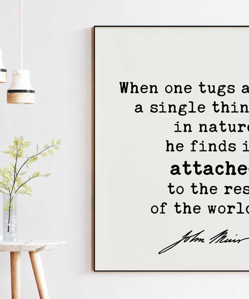 When one tugs at a single thing in nature, he finds it attached to the rest of the world. John Muir Quote Art Print - John Muir Quotes