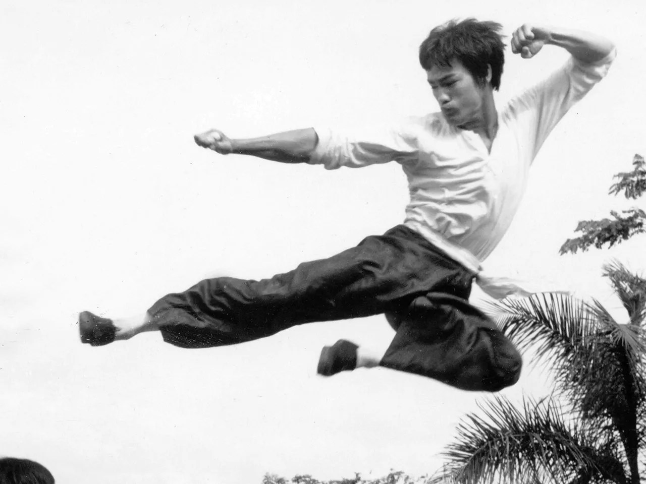 bruce lee flying kick