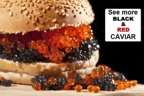 caviar3