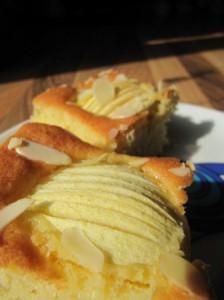 apfelkuchen sehr fein typisches Muster im Apfel