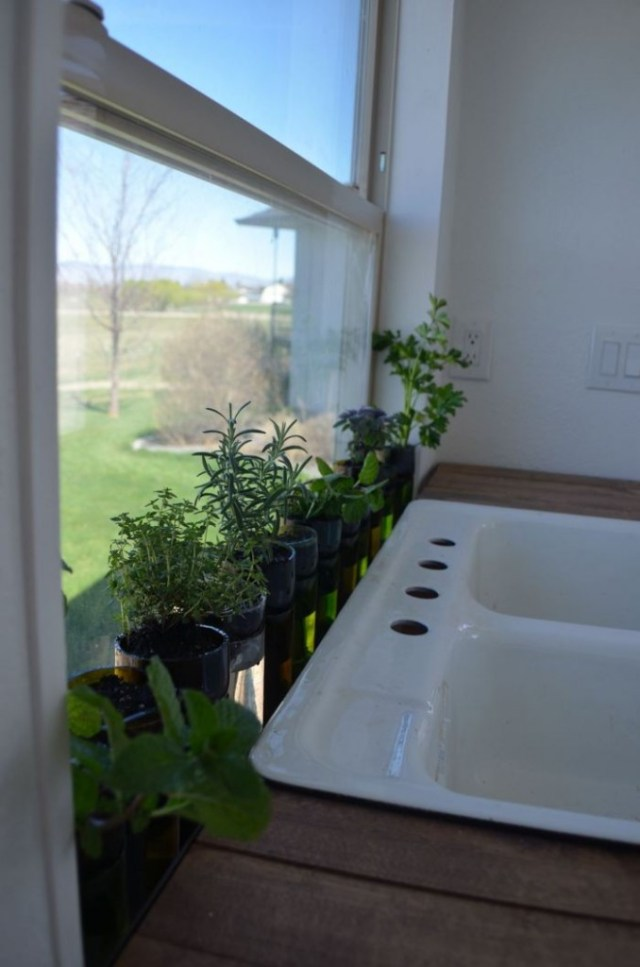 Recycled wine glass planter project