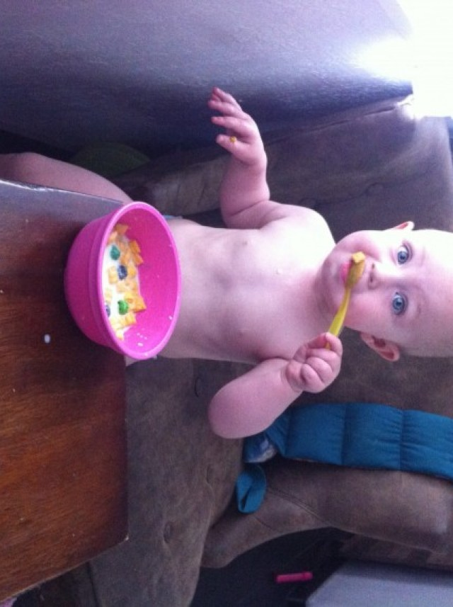 Every morning this chipmunk feeds herself a bowl of cereal, I think she does pretty good for 13 months old!