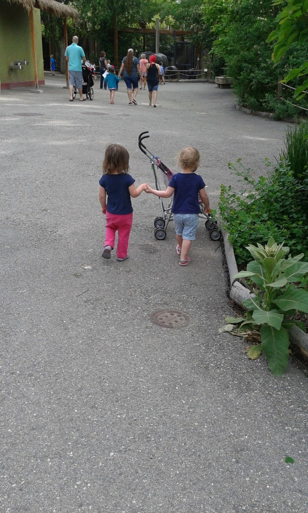 Might be the cutest thing I've seen, ever,  We went to the zoo with Hazels friend, Maddy the two girls love each other and one of them just took the other ones hand all day and they walked along!