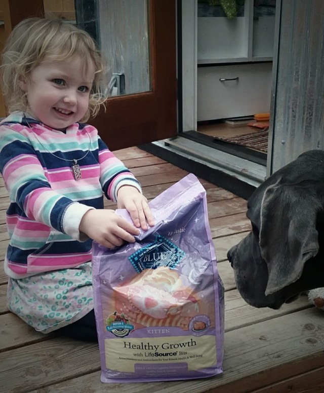 Hazel was SOO excited to get some kitty food in the amil to help save those baby cats!