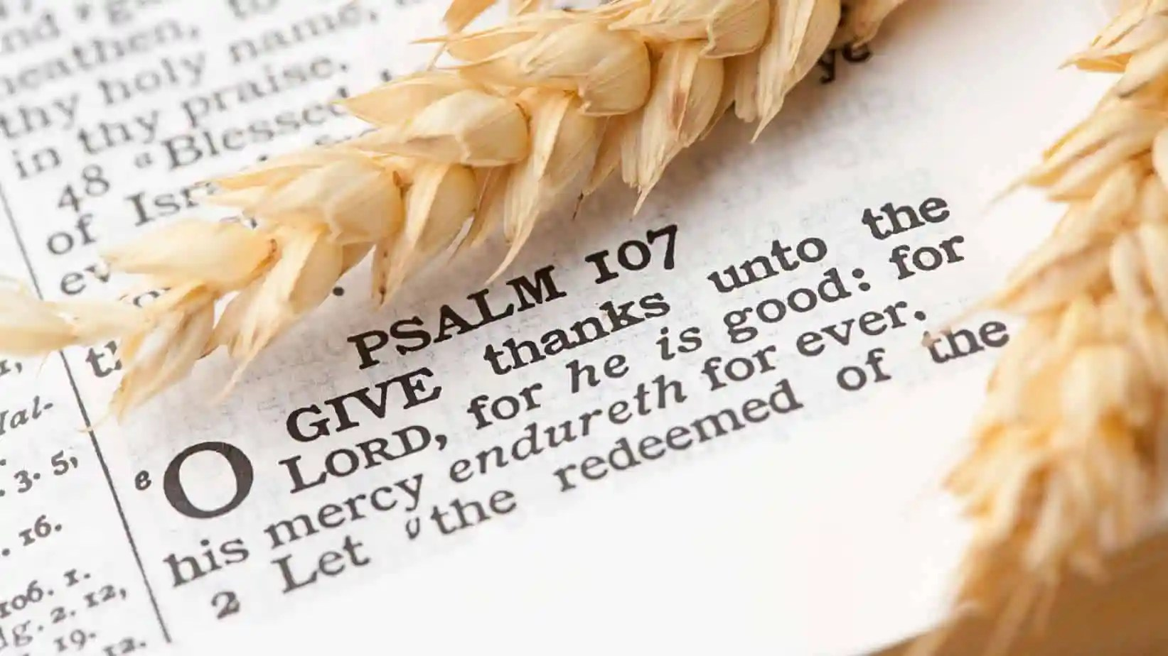 Top 10 Thanksgiving Bible Verses Scriputres On Gratitude Thankfulness