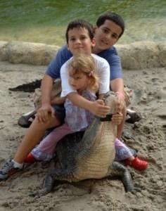 Swamp Themed Ideas for Children's Ministry