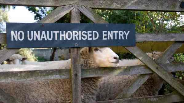 """The Gate for the Sheep"" Jesus I AM lessons"