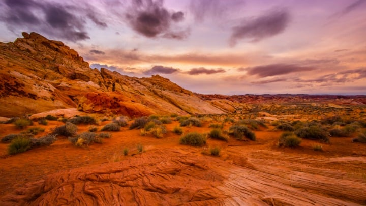 Devotional: Don't Ditch the Desert… How the Wilderness can Benefit Spiritual Health