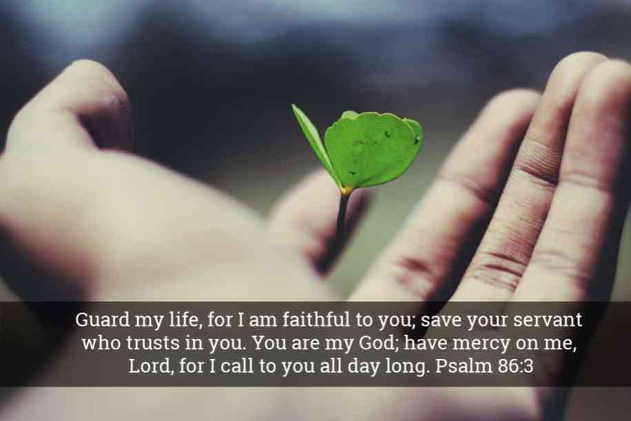 Guard my life from the Coronavirus - Bible Verse - Guard my life, for I am faithful to you; save your servant who trusts in you. You are my God; have mercy on me, Lord, for I call to you all day long. Psalm 86:3