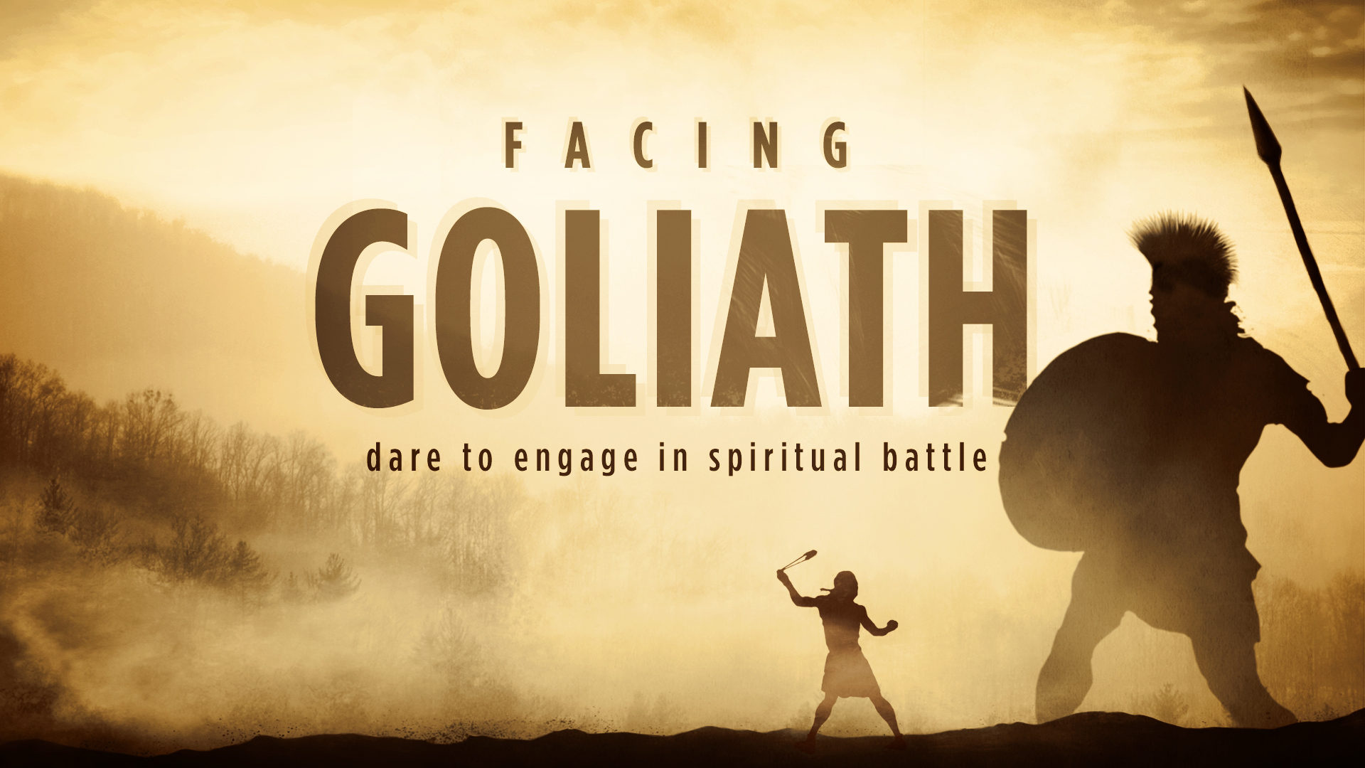 Image result for facing Goliath