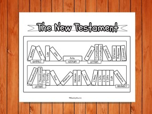 New Testament bookcase low res