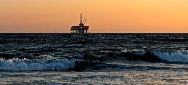 hemp cleans up oil spill