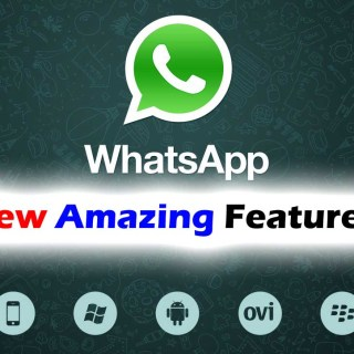 Whatsapp_Logo_01_10.jpg