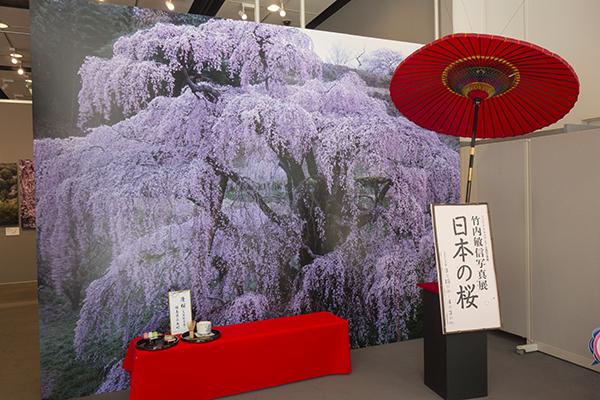 竹内敏信写真展 「日本の桜」 NIPPON-NO SAKURA