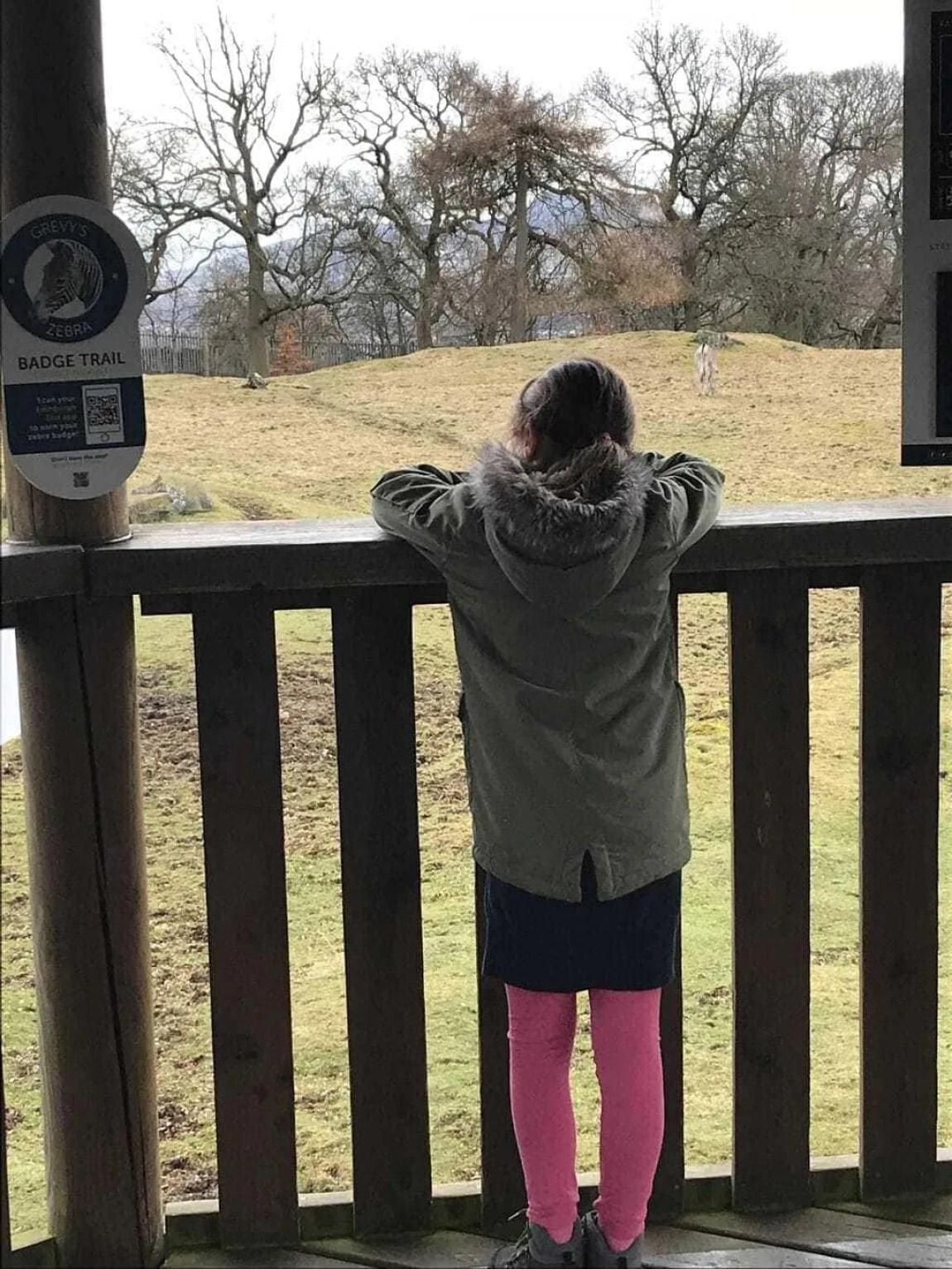 Mini Travellers A-Z of Edinburgh Zoo | Tips & Tricks