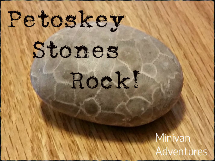 Petoskey Stones: How to identify them, where to find them, and how to polish them.