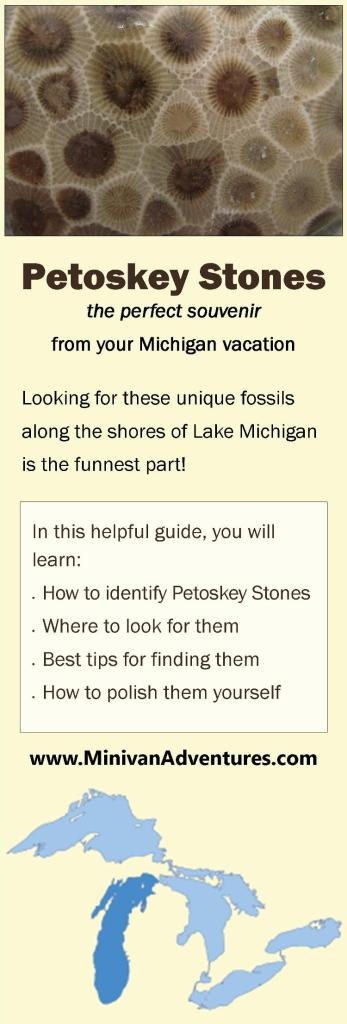 Petoskey Stones: The Perfect Souvenir from Your Michigan Vacation ~ What are Petoskey Stones, How to identify Petoskey Stones, Where to look for Petoskey Stones, Tips for finding Petoskey Stones, How to polish Petoskey Stones, Michigan State Stone, Michigan Fossils, Petoskey, Charlevoix, Northern Michigan, Lake Michigan