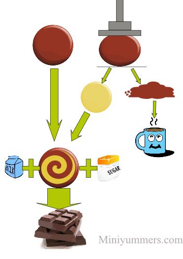 Stage of chocolate making - miniyummers.com