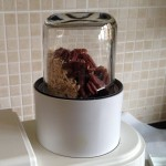 Grind pecans and oats into a powder