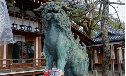 金運上昇の福の種のお守りがもらえる「杭全神社」
