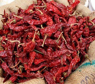 krydder india