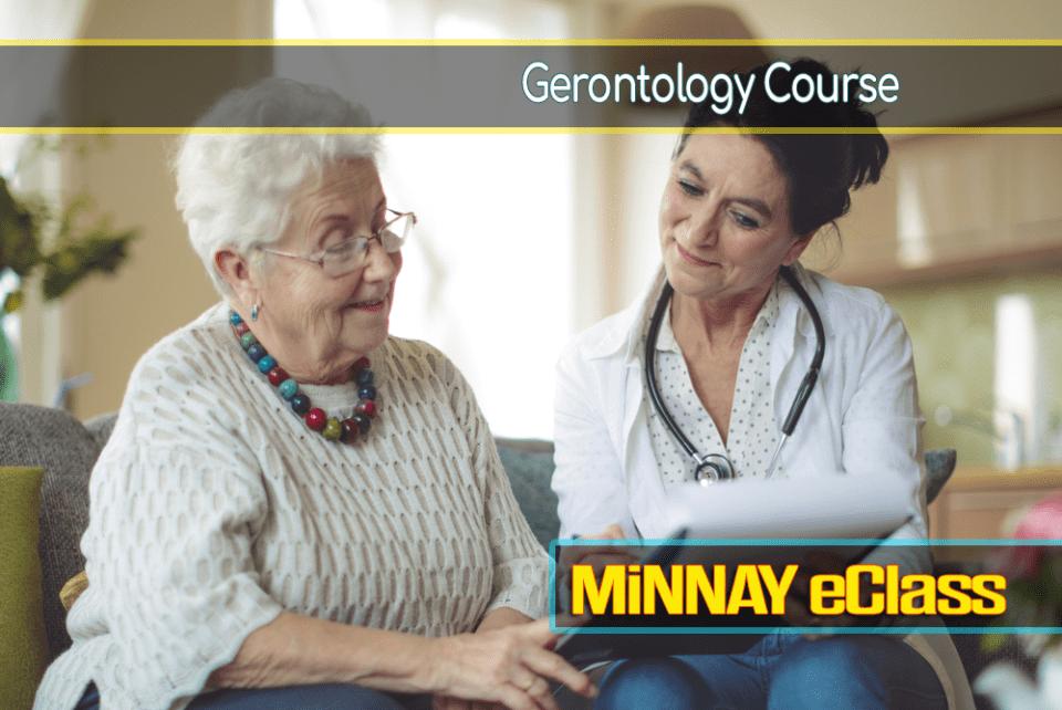 Nursing Gerontology Online Course