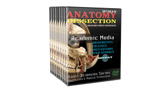 HUMAN ANATOMY DISSECTION DVDs
