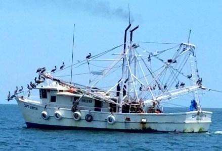 72017 shrimp boat savannah river on our wayto sea