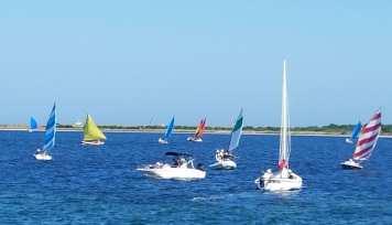 82017 Rainbow cat boat parade2