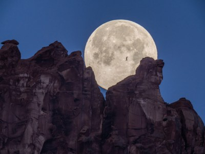 Moon walk from Renan Ozturk and Taylor Rees