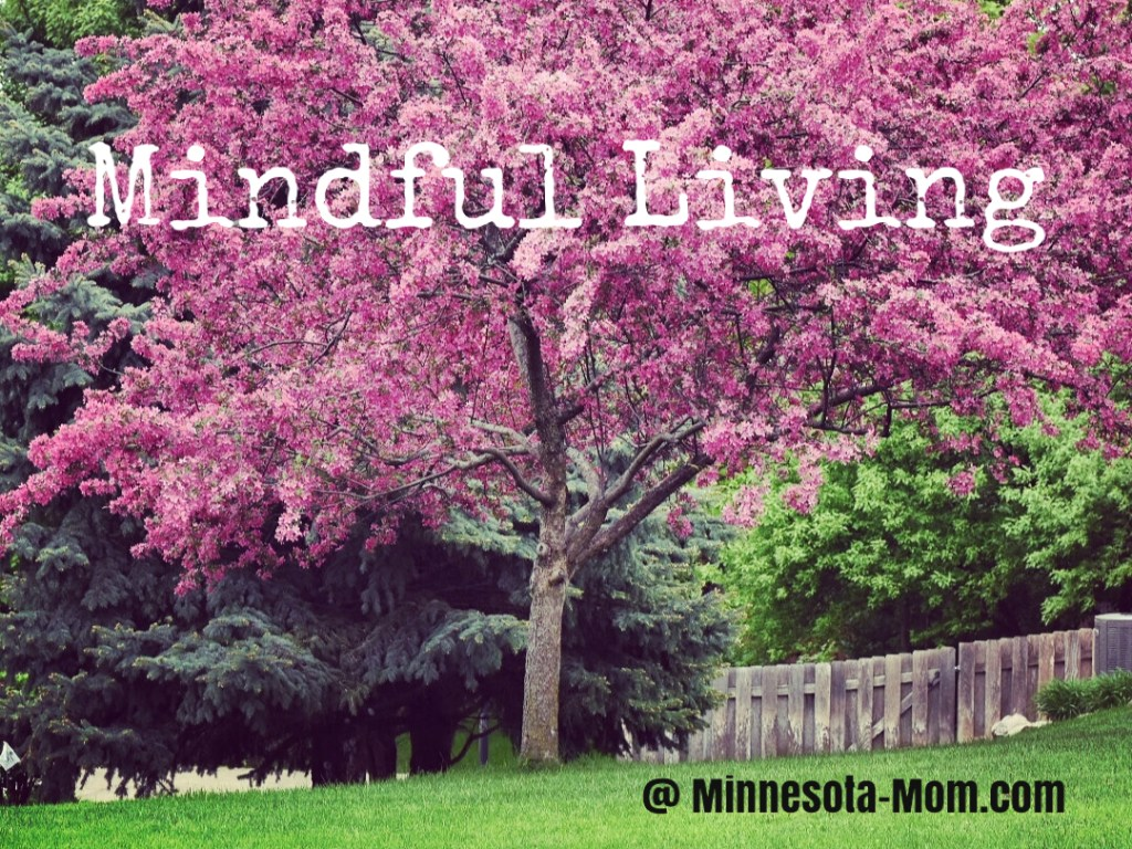 Some Thoughts on Spring and Mindful Living