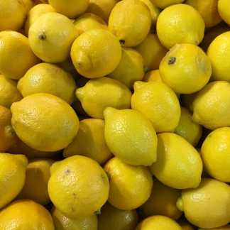 Buy Lemon Trees