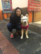 Met a new buddy in the streets of Quito