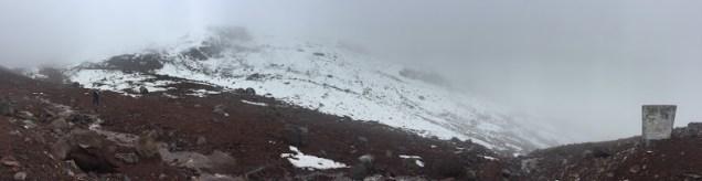 We found snow!
