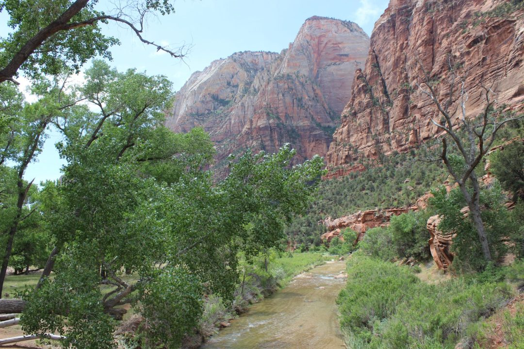 Zion, Lake of Fire, Lake Mead Trip May 2015 661.JPG