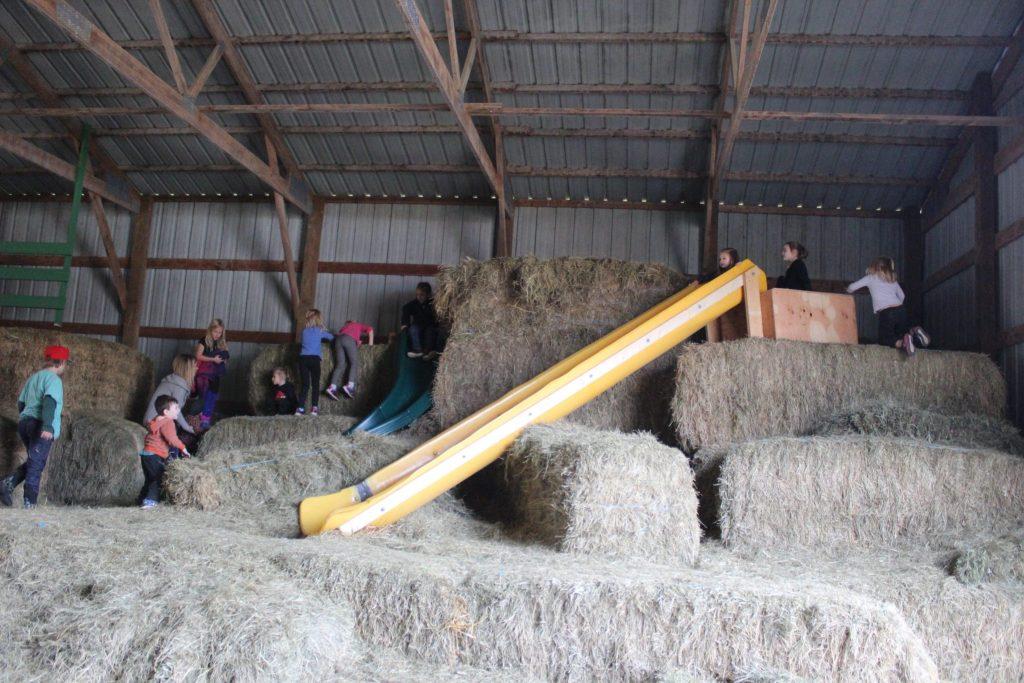 hay slides