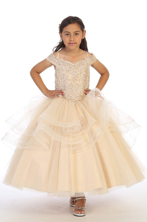 diana dress in champagne with embroidered top, Flower girl ballgown dress