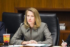"(Rep. Sarah Anderson, R-Plymouth, pictured during a hearing last February, doesn't think the state auditor's lawsuit is a good use of taxpayer dollars. ""To me, it's just a waste,"" she said. (Staff photo: Kevin Featherly)"