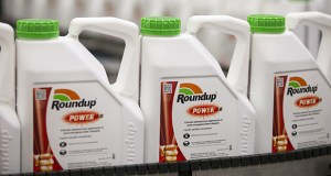 Bottles of Roundup weedkiller move along the production line at the herbicide manufacturing facility operated by Monsanto Co. in Antwerp, Belgium, on June 14, 2016. Monsanto has since been acquired by Bayer AG. (Bloomberg file photo)