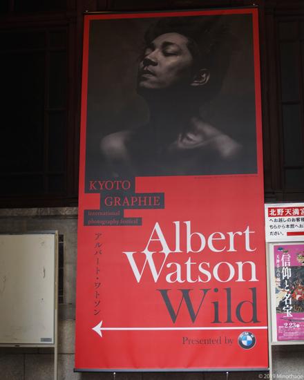 KG2019(Albert Watson)