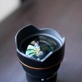 Nikon Fマウント広角ズーム