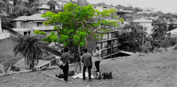 Yohei Omura, Chie Konno, Yo Shimada and Paul Hotston discuss the tree.